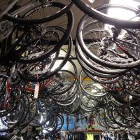 Bikes for sale hanging on ceiling